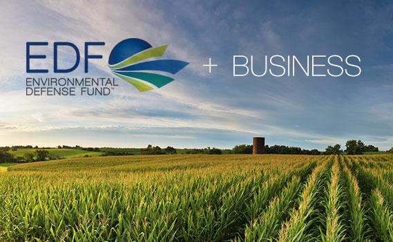 EDF + Business thumbnail